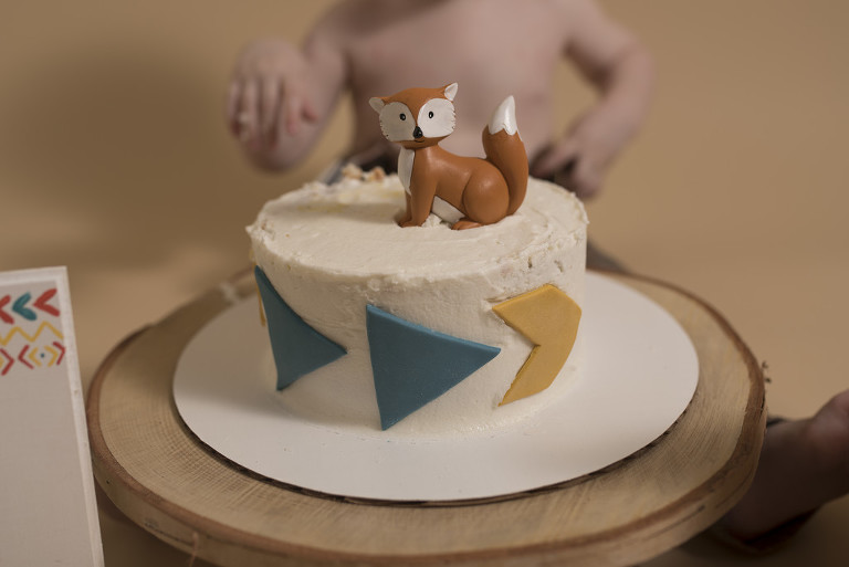 Grayson Salt Lake City Cake Smash Photography